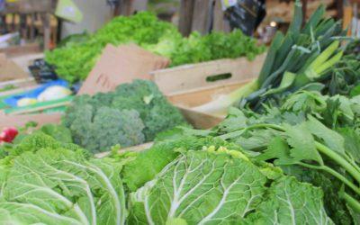 Légumes Bio direct producteurs